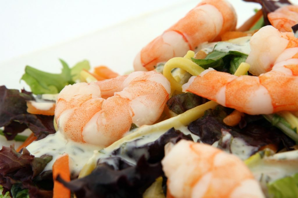 shrimp-protein-myths