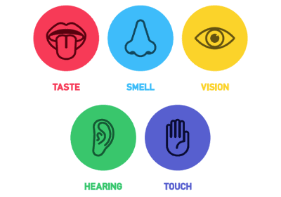 mindful-eating-tips-five-senses