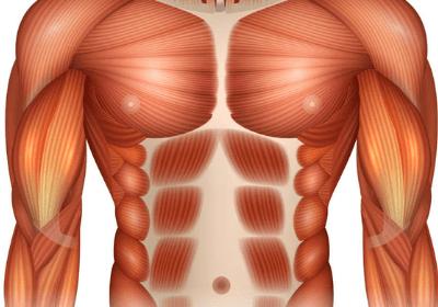 diastasis-recti-exercises-for-men